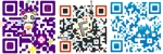 QR Codes, what's the deal?